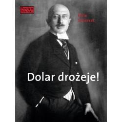 (e-book) Dolar drożeje! Powieść inflacyjna z pewnego starego miasta