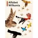 Alfabet Wilkonia
