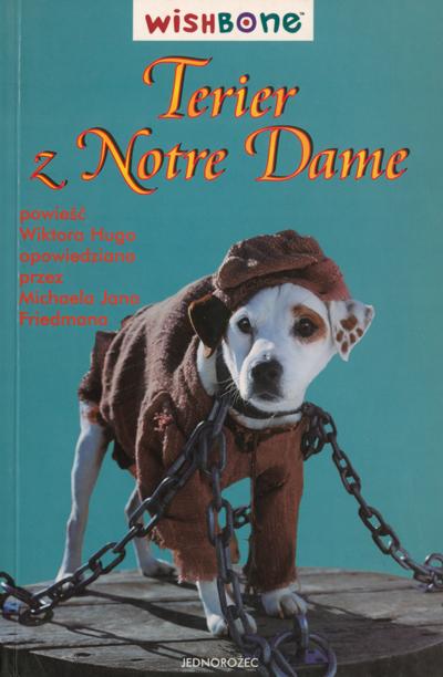 Terier z Notre Dame