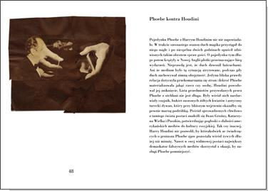 Niedokończone życie Phoebe Hicks